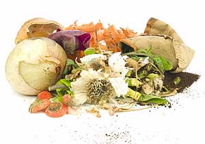 GreenEnews_food_waste